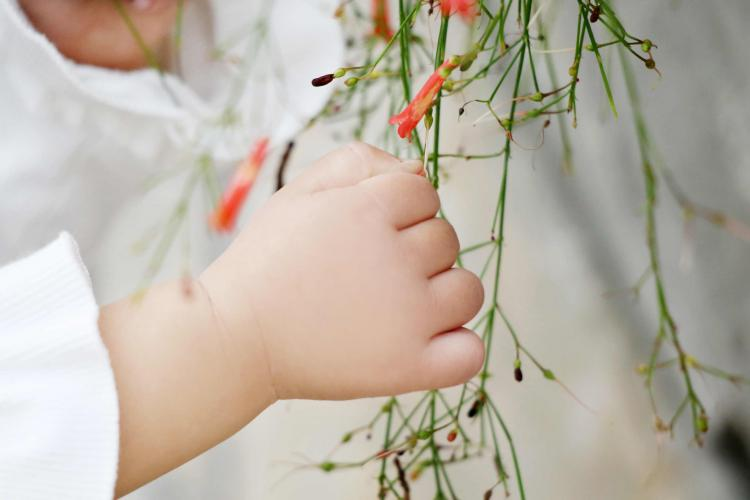中国五分之一儿童体重超标 美媒:垃圾食品吃多了